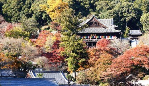 【奈良の紅葉】長谷寺もみじまつりと周辺グルメ食べ歩き